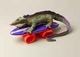 Wild Skateboarding Monitor Lizard craft