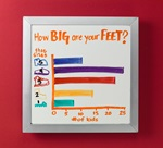 Big Foot Bar Graph lesson plan